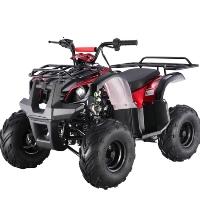 125cc Quad Utility 4 Stroke Fully Auto ATV - ATA125D