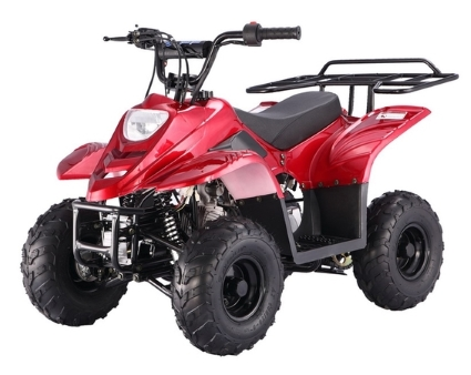 50cc/70cc/90cc/110cc Racing 4-wheeler ATV Product details - View ...