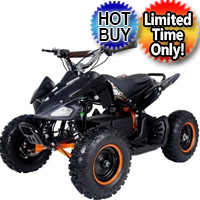 350 Watt 24 Volt Electric Four Wheeler ATV - E1-350