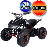 500 Watt 36 Volt Electric Four Wheeler ATV - E1-500