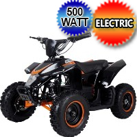 500 Watt 36 Volt Electric Four Wheeler ATV