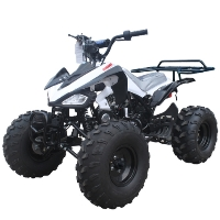 "Tao Tao 110cc Atv Cheetah Midsize ATV Fully Auto W/Reverse & Big 19""/18"" Wheels! - G110 CHEETAH"