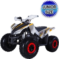 Tao Tao 120cc ATV Rex Automatic With Reverse Four Wheeler