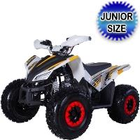 Tao Tao 120cc ATV Rex Automatic With Reverse Four Wheeler