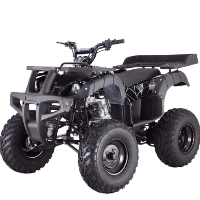 Brand New 200cc Elite Fully Assembled Manual ATV
