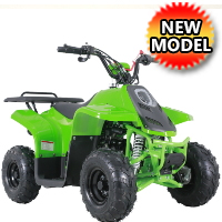 110 Atv Fully Auto w/Reverse Sport 4 Wheeler - ROCK110