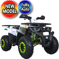 Raptor 200 ATV Automatic 169cc 4 Stroke ATV - Raptor200