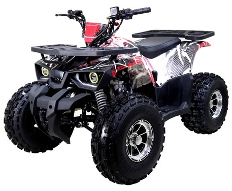tao tao 125 atv raptor mid size automatic with reverse. Black Bedroom Furniture Sets. Home Design Ideas
