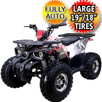Tao Tao 125 ATV Raptor Mid Size Automatic With Reverse Junior 4 Wheeler
